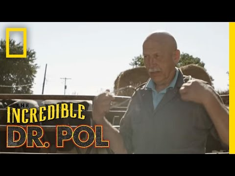 Official Trailer | | The Incredible Dr. Pol